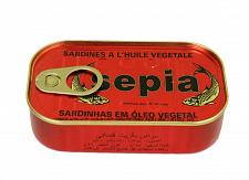 Buy Moroccan Sardines producers,