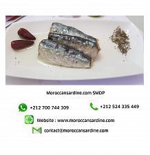 Buy wholesale Moroccan sardines