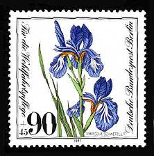 Buy German Berlin MNH #9NB185 Catalog Value $1.40