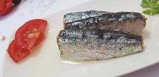 Buy Organic Moroccan Sardines