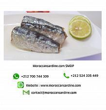 Buy Moroccan Sardines Producer