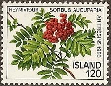 Buy [IC0530] Iceland: Sc. No. 530 (1980) MNH Single