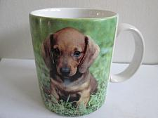 Buy Dachshund Dog Picture Memorial Urn on Mug Tea Coffee Cup Candle Holder Dipper