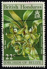 Buy British Honduras #257 Swan Orchid; Used (0.25) (1Stars) |BHO257-01XVA