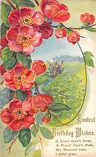 Buy Kindest Birthday Wishers Embossed Flowers Art Vintage Postcard