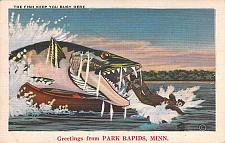Buy The Fish Keep You Busy Here, Greetings From Park Rapids Minn Vintage Postcard