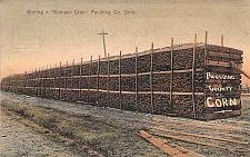 Buy Storing a Bumper Crop, Paulding County Corn, Ohio Vintage Postcard