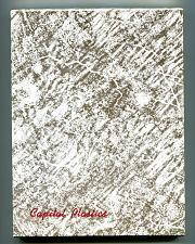 Buy CAPITAL PLASTICS SUSAN B ANTHONY 1979-1981 NO. 454 PRISTINE VIRTUALLY NEW