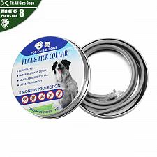 Buy New Pet Collar Adjustable Flea Tick Collar 8 Months Protection FREE SHIPPING!!