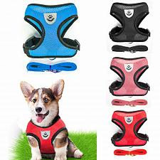 Buy Breathable Dog Pet Harness and Leash Set Puppy Cat Vest Harness Collar