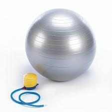 "Buy *16678U - Resilient Silver 26"" Exercise Ball w/ Pump"