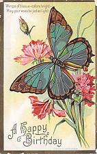 Buy A Happy Birthday, Butterfly on Flower Embossed Vintage Postcard