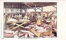 Buy Columbia River Salmon Cannery Vintage Postcard