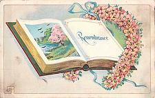 Buy Book of Remembrance Embossed Vintage Postcard