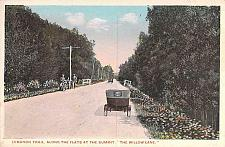 Buy Lebanon Valley Trail, The Willow Lane with Cars, Bicycles Vintage Postcard