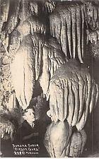 Buy Banana Grove, Oregon Caves Oregon Real Photo Postcard RPPC