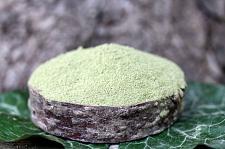 Buy 1 kilo Sheep Sorrel Powder