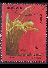 Buy BOLIVIEN BOLIVIA [1974] MiNr 0864 ( O/used ) Pflanzen
