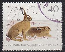 Buy GERMANY DDR [1968] MiNr 1362 ( OO/used ) Tiere