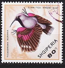 Buy ALBANIEN ALBANIA [1968] MiNr 1325 ( O/used ) Vögel