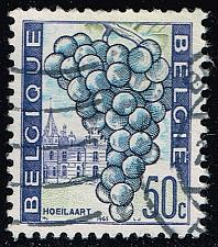 Buy Belgium #641 Grapes; Used (0.25) (3Stars) |BEL0641-03XRS
