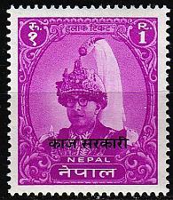 Buy NEPAL [Dienst] MiNr 0012 ( **/mnh )