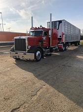 Buy 1980 Peterbilt 359 EXHD Semi Tractor With 2008 Carrier 2500A Utility Reefer Trailer