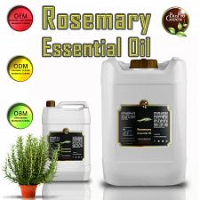 Buy Rosemary