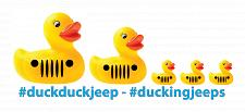 Buy Duckduckjeep