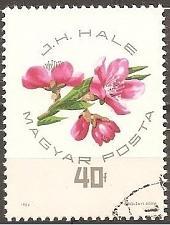 Buy [HU1607] Hungary Sc. no. 1607 (1964) CTO