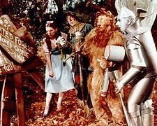 Buy Rare The Wizard Of Oz Hollywood 8 x 10 Promo Photo Print