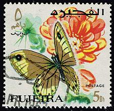 Buy Fujeira **U-Pick** Stamp Stop Box #160 Item 31 |USS160-31XVA