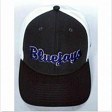 Buy Westminster College Fulton Blue Jays Men's Gray Strapback Hat Cap