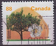 Buy KANADA CANADA [1994] MiNr 1407 Du ( O/used ) Pflanzen