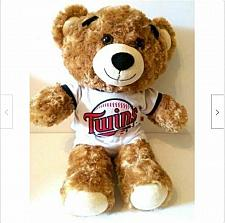 "Buy Minnesota Twins 17"" Plush Teddy Bear Build A Bear MLB Baseball Collectible"