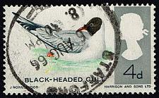 Buy Great Britain #461 Blackheaded Gull; Used (0.25) (2Stars)  GBR0461-01XVA