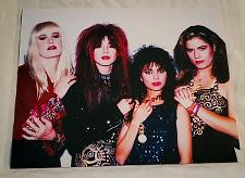Buy Rare THE BANGLES Music Superstar 8 x 10 Promo Photo Print