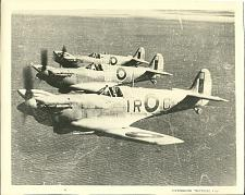 Buy Vintage Supermarine Spitfire Original WWII Airplane Plane Photo Photograph