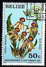 Buy BELIZE [1981] MiNr 0610 ( O/used ) Blumen