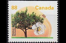 Buy KANADA CANADA [1994] MiNr 1407 Ho ( **/mnh ) Pflanzen