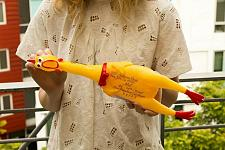 Buy Personalize hand written messages RUBBER CHICKEN CARRIER SERVICE FREE DELIVERY