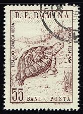 Buy Romania **U-Pick** Stamp Stop Box #147 Item 71 |USS147-71XVA