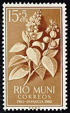 Buy Rio Muni #B2 Croton Plant; Unused No Gum (0.25) (1Stars) |RIOB02-01XVA