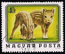 Buy Hungary #2403 Wild Boars; CTO (0.25) (2Stars) |HUN2403-01