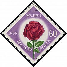 Buy Hungary #1222 Rose; CTO (0.25) (2Stars) |HUN1222-01