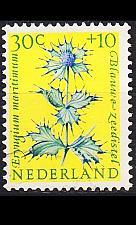 Buy NIEDERLANDE NETHERLANDS [1960] MiNr 0750 ( **/mnh ) Blumen
