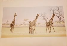 Buy Mary Ann Lis - Artist Proof Signed Lithograph - 'Giraffes'