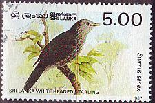 Buy CEYLON SRI LANKA [1987] MiNr 0790 I ( O/used ) Vögel