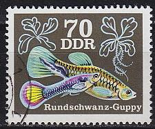 Buy GERMANY DDR [1976] MiNr 2181 ( OO/used ) Tiere