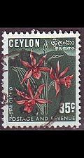 Buy CEYLON SRI LANKA [1950] MiNr 0270 II ( O/used ) Pflanzen